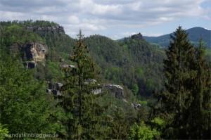 V tomto údolí pod Vilemíninou stěnou se v polovině 90. let usadil v Českém Švýcarsku první pár sokolů stěhovavých. (Foto: Hartmut Landgraf)