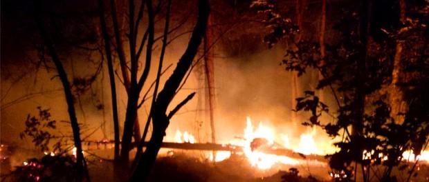 Waldbrand im Affensteingebiet