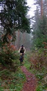 Mathias Abfahrt über holprige Waldpfade