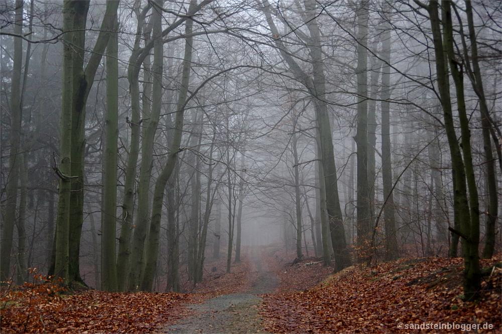 Nebel am Rosssteig