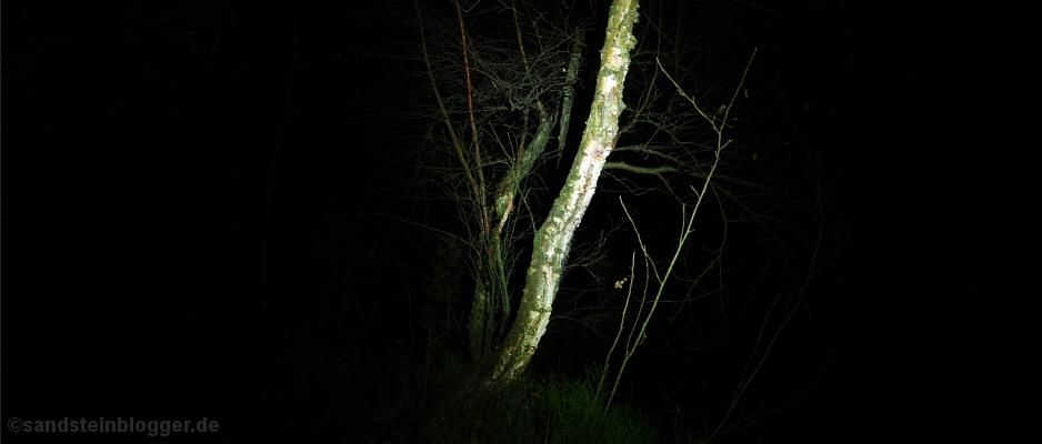 Nacht im Heringsgrund