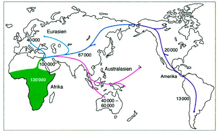 Karte der Wanderrouten des Homo sapiens