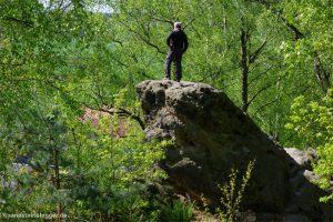 Frank Richter auf dem Stein, auf dem im Gemälde Friedrichs Wanderer steht