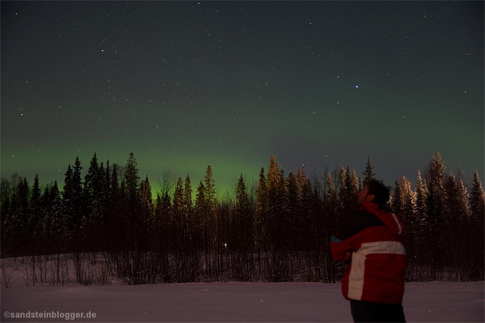 Mann am Waldrand, darüber Nordlichter