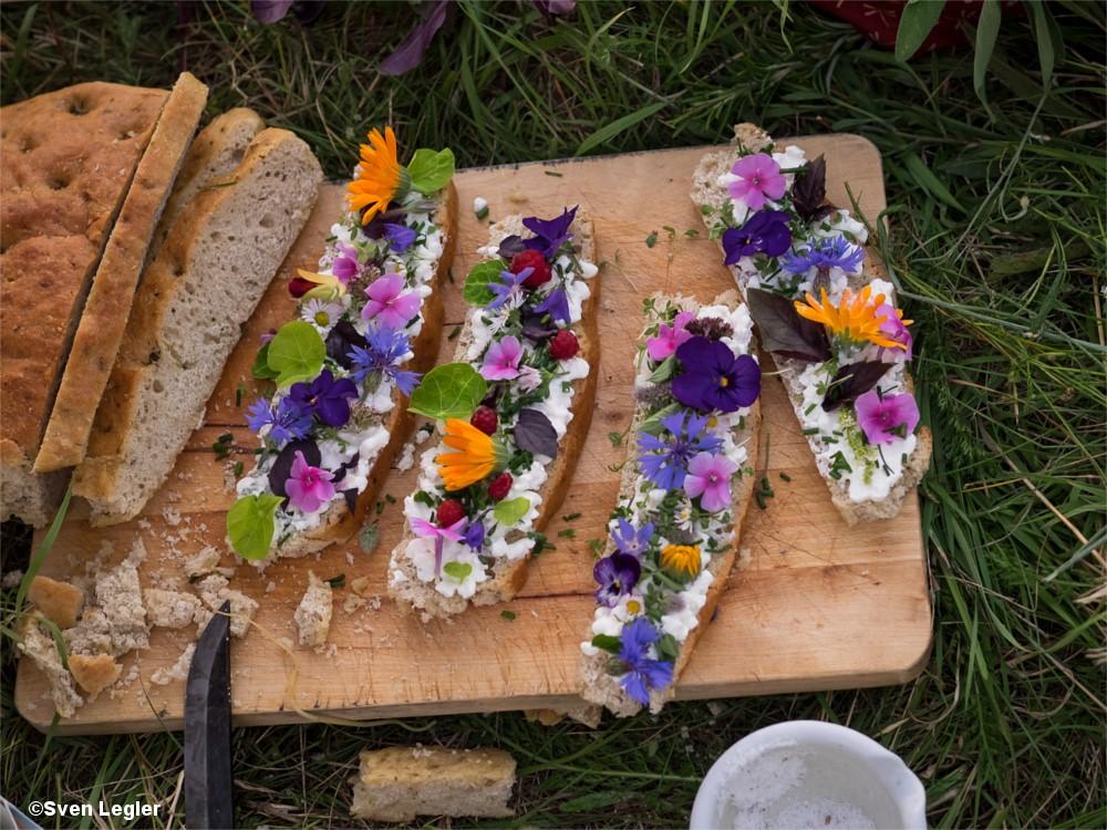 Brotscheiben mit Frischkäse und verschiedenen Sommerblüten