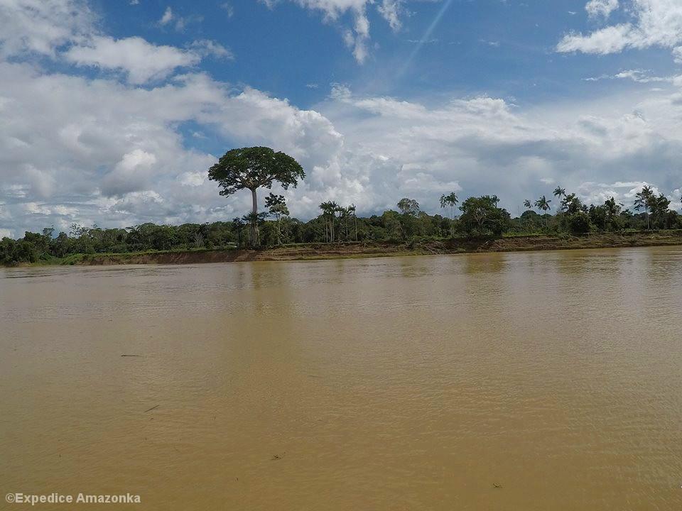 Tropische Flusslandschaft