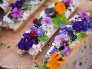 Brot mit Frischkäse und Blüten
