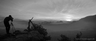 Fotograf, Kiefer, Nebel, weite Landschaft