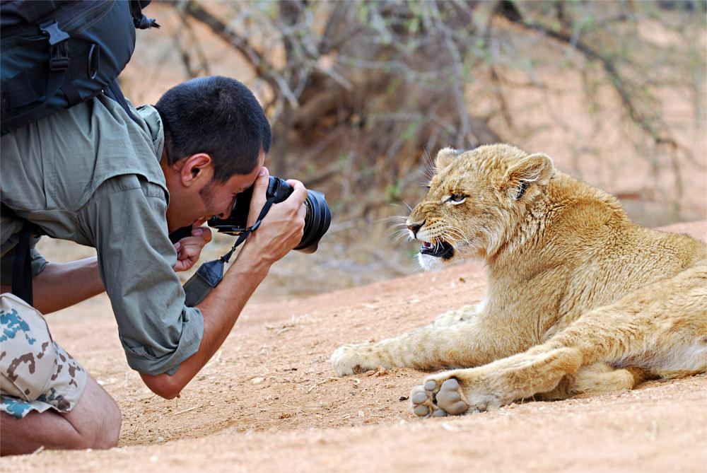 Fotograf mit Löwe