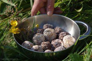 Schokobällchen mit Kokosraspel