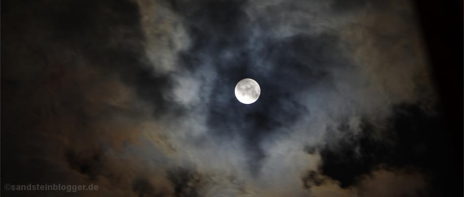 Die Nacht im Wolfswald