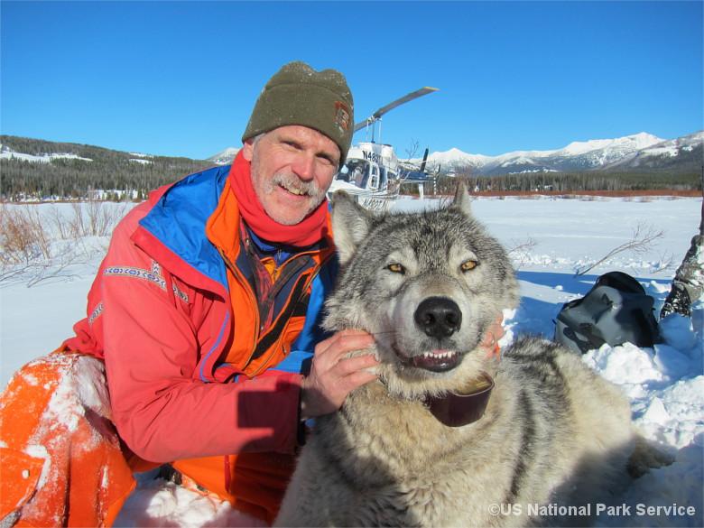 Wolfsforscher Doug Smith