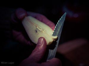 Birnenscheibe und Messer