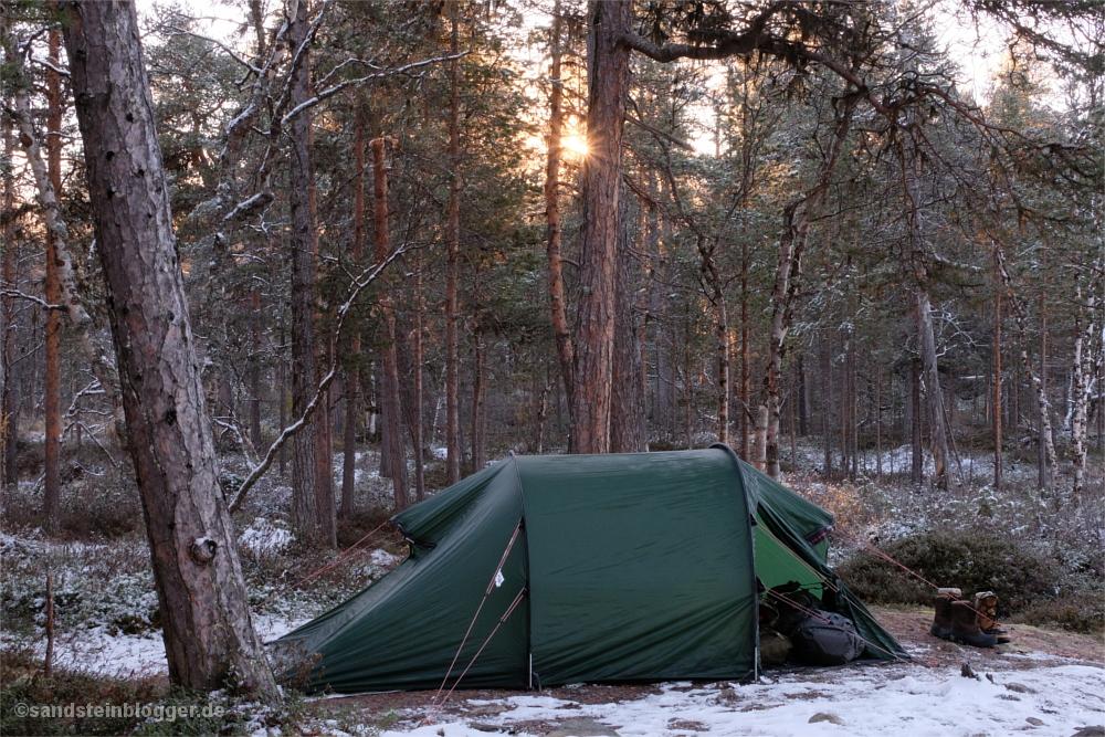 Zelt im Wald, aufgehende Sonne