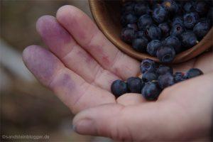 Tasse mit Heidelbeeren