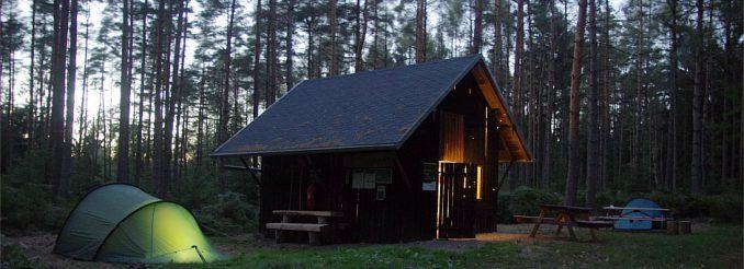 Wald, Biwakplatz mit erleuchtetem Zelt und Schutzhütte