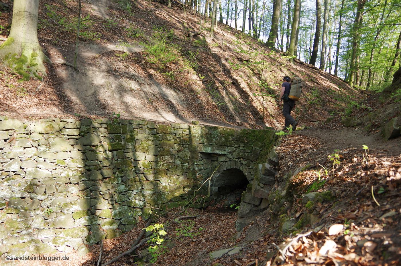 Alter Buchenwald, ein mit Stützmauern befestigter Weg windet sich am Hang entlang